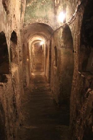 St. Agatha's Crypt, Catacombs & Museum: flippant