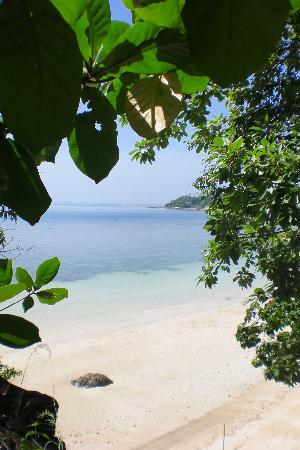 High Life Bungalow Resort: Strand von den Treppen aus