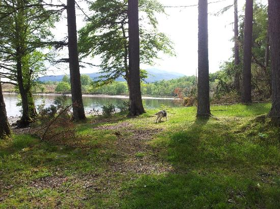 Burnbank Lodges: lovely walking areas near by