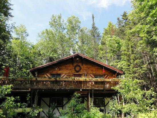 Welch Mountain Chalet Bed & Breakfast: The Chalet in June