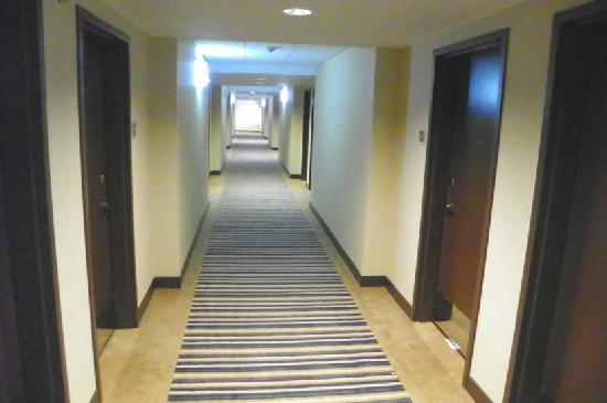 Four Points By Sheraton Oklahoma City Quail Springs: 4th floor hallway