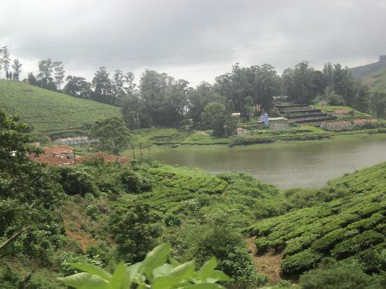 Theni India  City new picture : Meghamalai High Wavy Mountains Theni Top Tips Before You Go ...