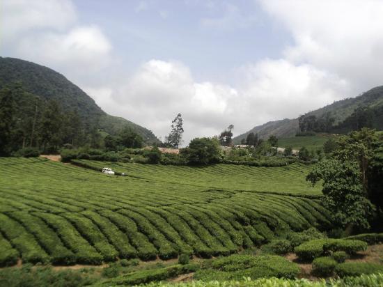 Theni, Indie: meghamalai