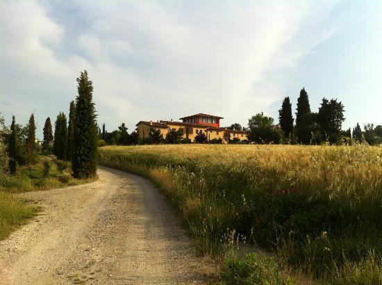 Borgo dei Lunardi: Vista dai vigneti