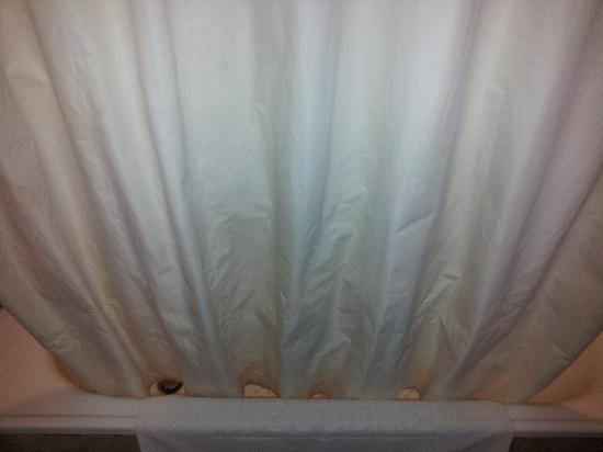Park View Hotel: crispy shower curtain