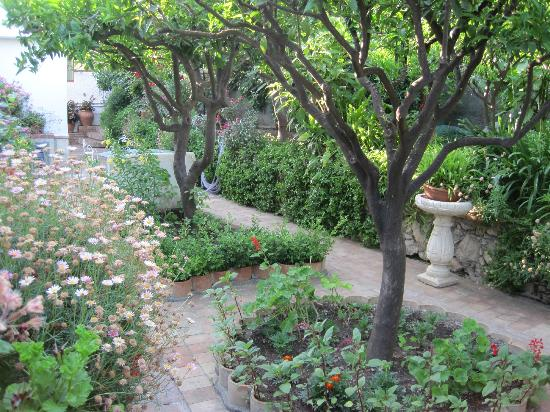 Villa Costanza Bellavista: Lovely gardens around the apartments