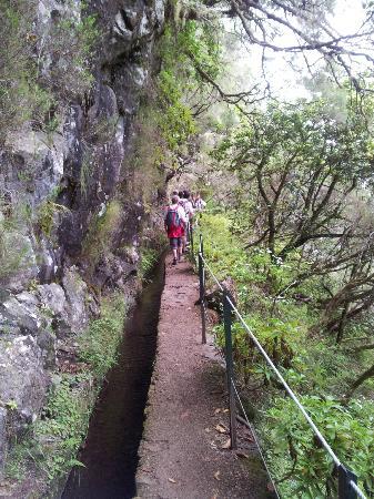 Madeira Explorers: Lavada Walk