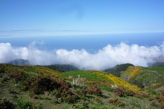 Madeira Explorers: Top of the World