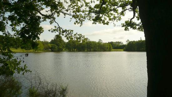 La Maison du Lac : le lac