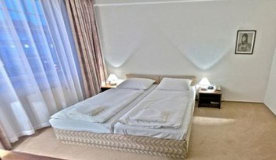 A-Austerlitz Hotel: Guest Room