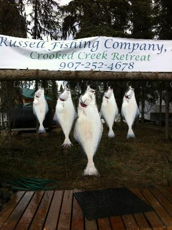 Crooked Creek Retreat & Outfitters: Great fishing