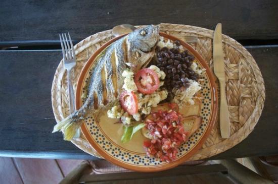 Playa Viva: Dinner