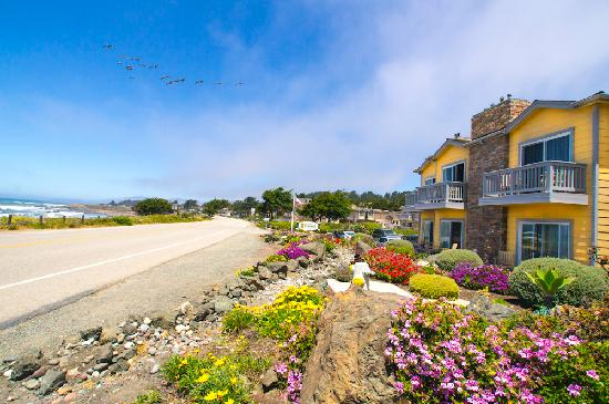 Pelican Inn & Suites: Enjoy Miles of Beautiful Coastline