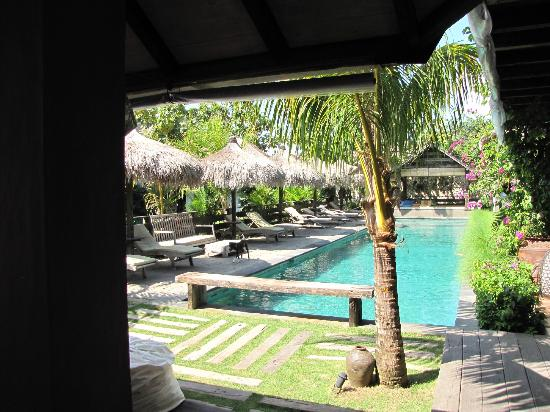 Rapture Surfcamp Bali: Pool area