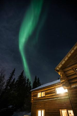 A Taste of Alaska Lodge: Auroras from Taste of Alaska Lodge