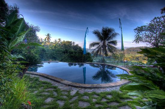 Kubu Carik Bali: Traumblick vom Pool auf herrliche Reisfelder