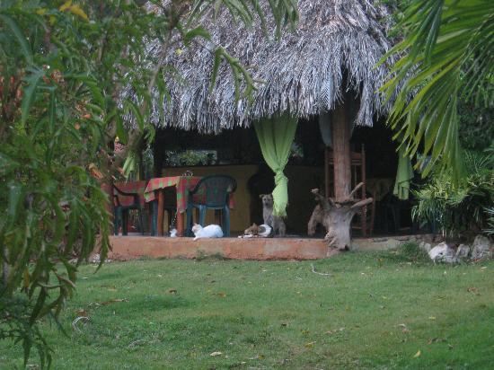 La Hacienda Hostel Ranch: Communal hut.
