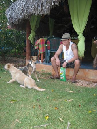 La Hacienda Hostel Ranch: Hostel animals.