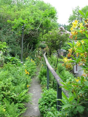 Mount Garmon View Guesthouse: the garden path up to the parking