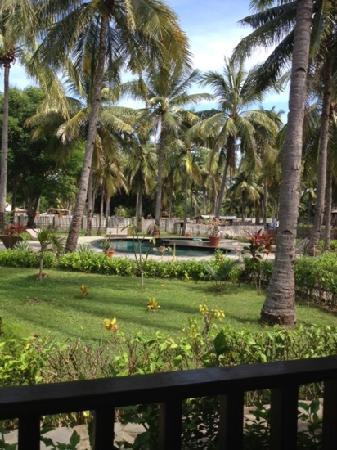 Trawangan Oasis: pool
