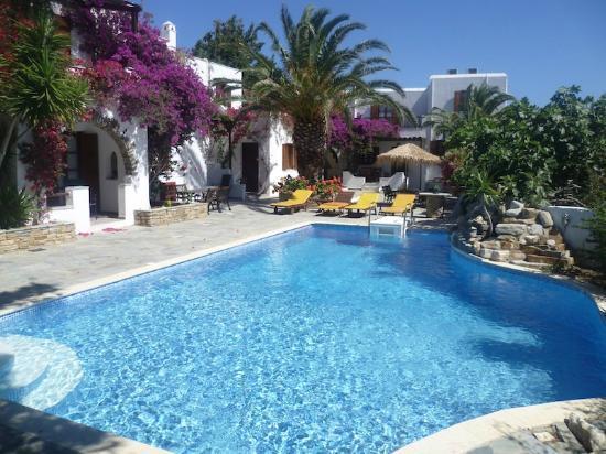 Summerland  Holiday's Resort : Pool area 2