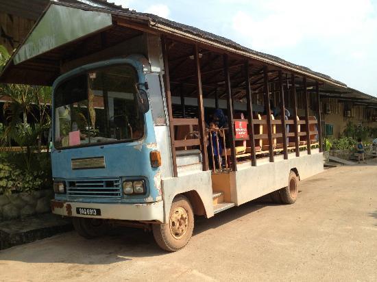 UK Farm : Tour on bus
