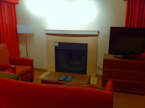 Residence Inn by Marriott Atlanta Buckhead : Living area -