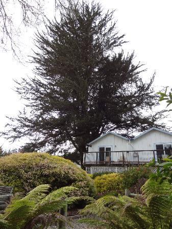 Bluebird Inn: along the rear of the property