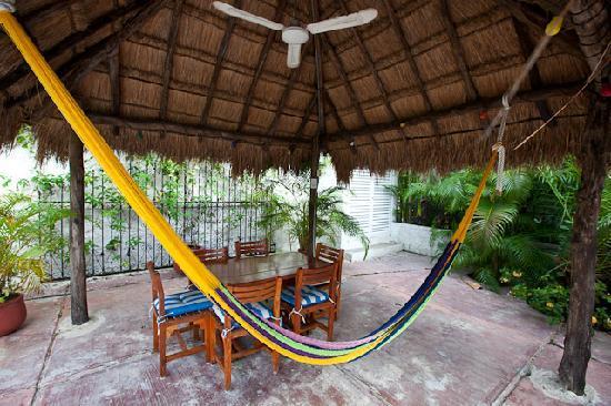Casa Quetzal: Palapa