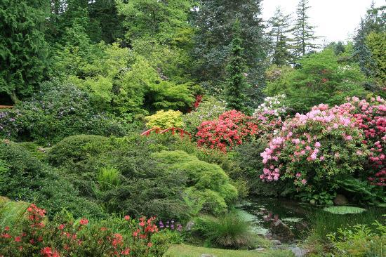 Kubota Garden: beautiful scenery