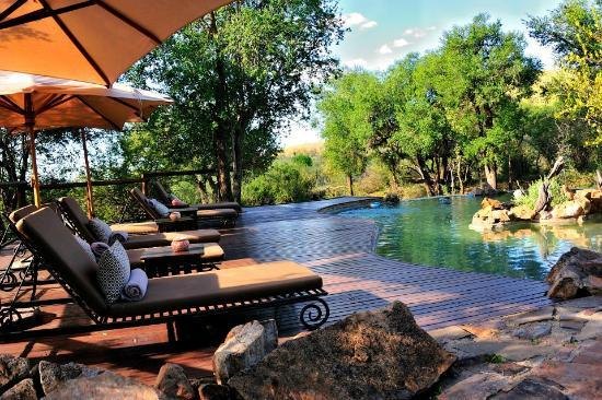 Impodimo Game Lodge: The Pool.