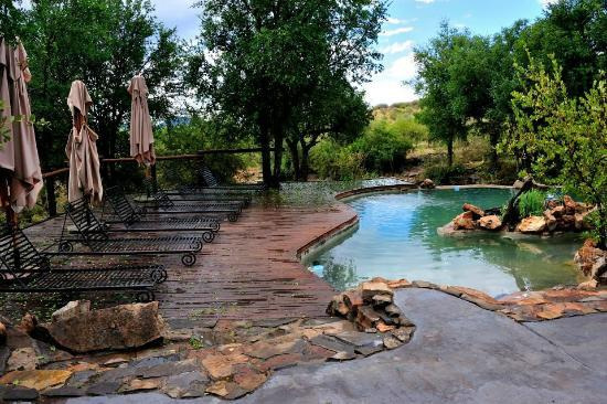 Impodimo Game Lodge: The main Pool.