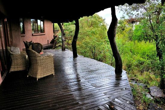Impodimo Game Lodge: you are in the bush and 90% you may see a big five from here.