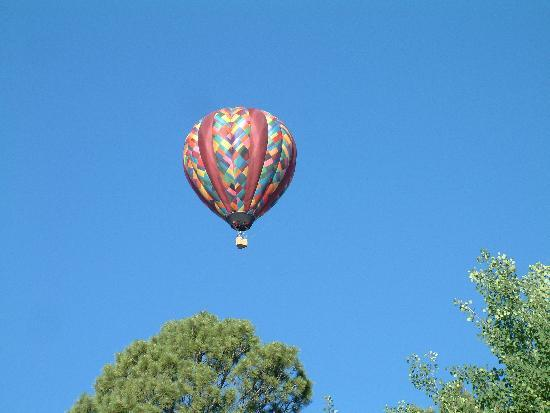 Rocky Mountain Balloon Adventures, LLC.: The Rose Window balloon takes off