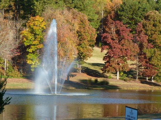 Travelers Rest, SC: Cottage view