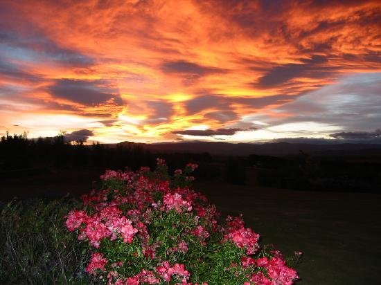 Longview Farmstay Bed and Breakfast: Glorious sunsets