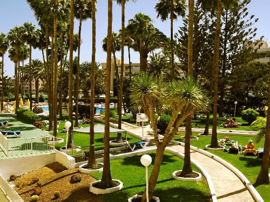 Playa del Sol -  Adults Only : great pool & gardens
