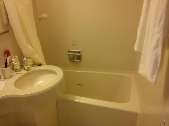Kawasaki Green Plaza Hotel: Bra toa med bad&ducsh