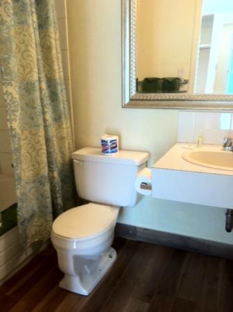Alpine Lodge Motel: Clean Bathroom