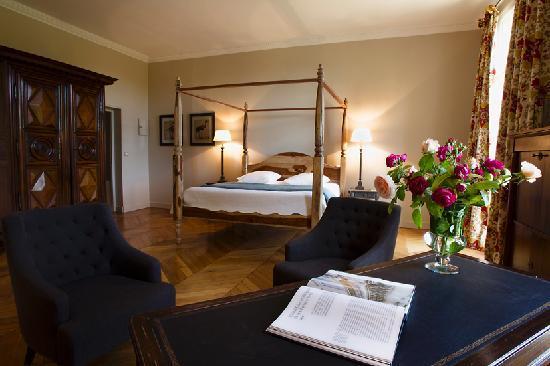 Nazelles-Negron, France: Priviledge Room