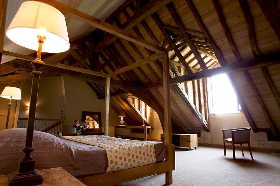Chateau de Perreux - Amboise : Priviledge Room