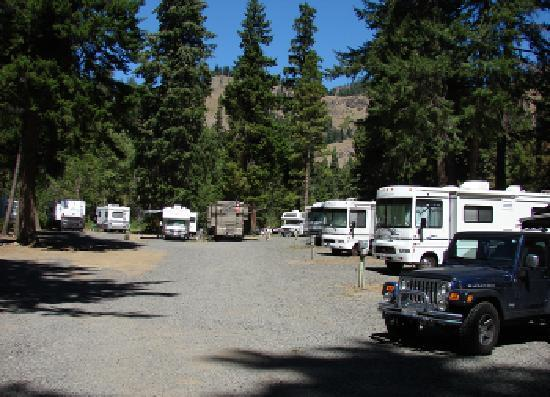 Squaw Rock Resort: Photo of the RV sites. There are over 70 sites with power, water and sewer services.