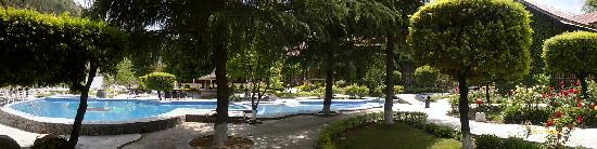 Mohal, India: swimming  pool