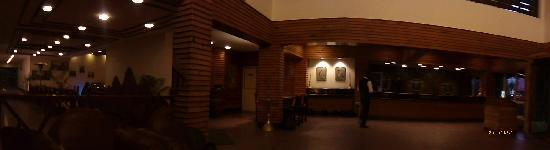 Mohal, India: lobby by night