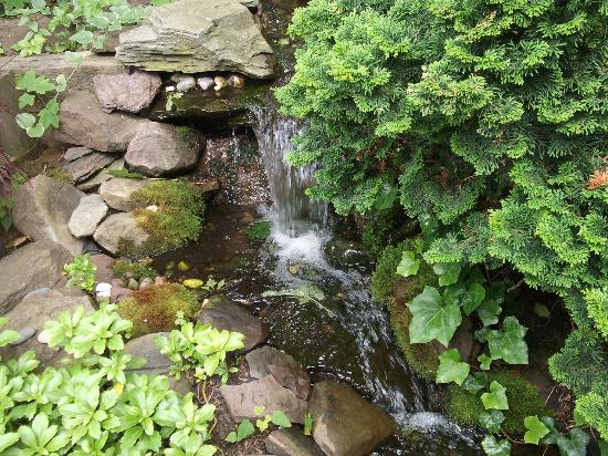 Crowne Pointe Historic Inn & Spa: Small waterfall near Spa area