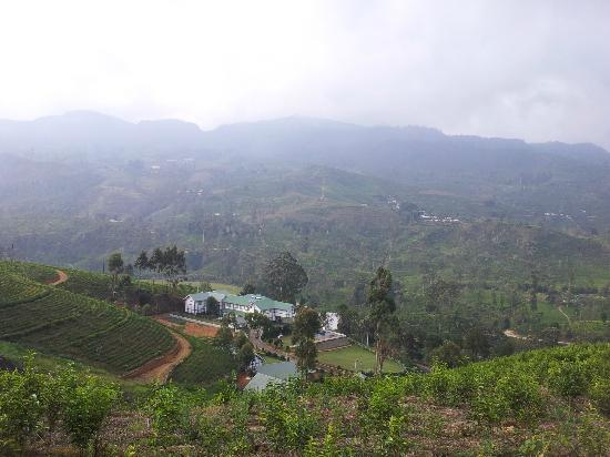 Langdale by Amaya : View of hotel from tea plantation