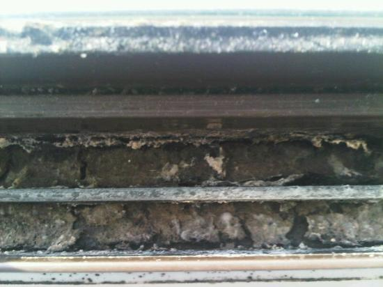 Best Western Milton Keynes Hotel: mould - and dirt - on the window frame (from condensation?)