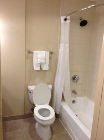 Hilton Austin Airport: Bathroom.