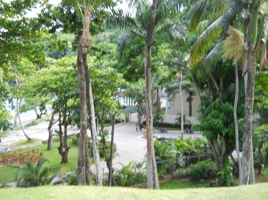 Grand Bahia Principe Cayacoa: outras vistas, muita vegetacao