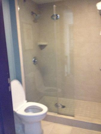 Hyatt Place Jacksonville Airport: Bathroom